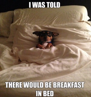 Ontbijtje op bed