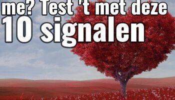 Houd ze echt van me- test met deze signalen (1)